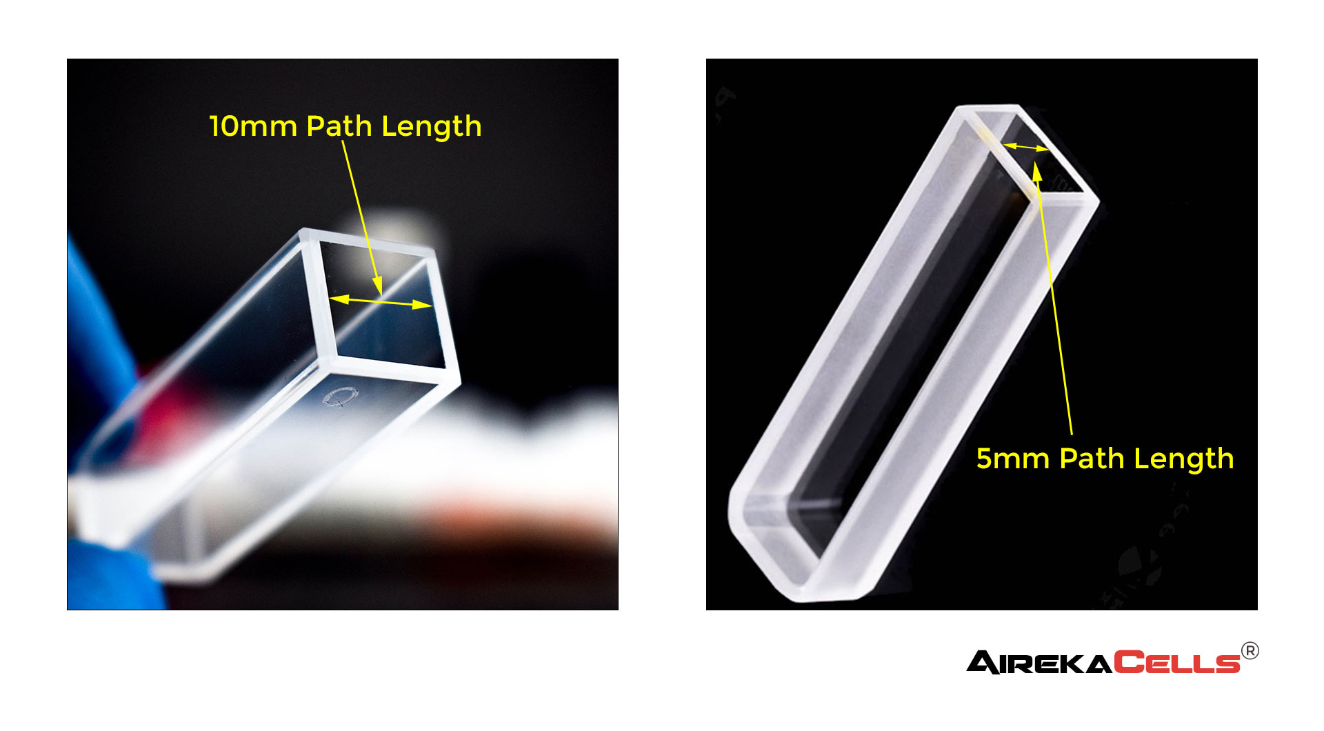 10 and 5mm Path Length Cuvette Example