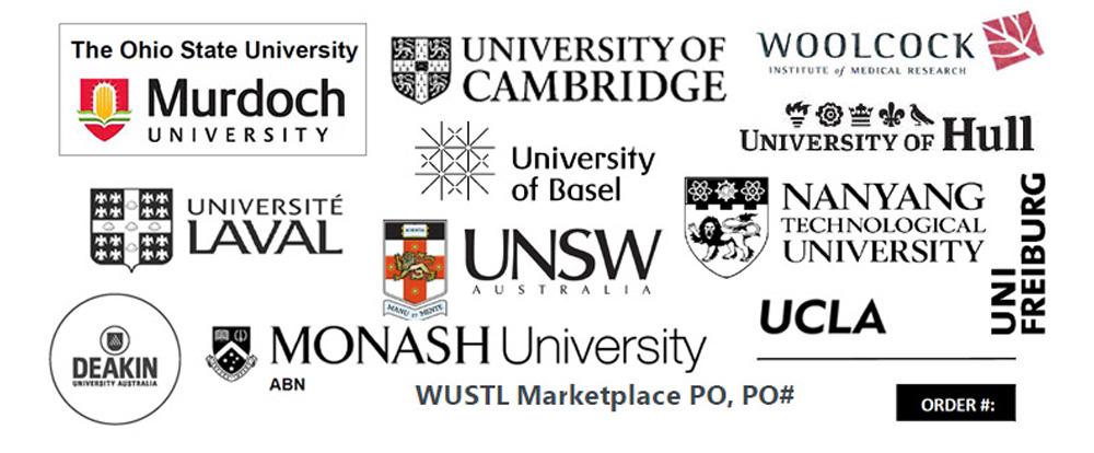 university clients